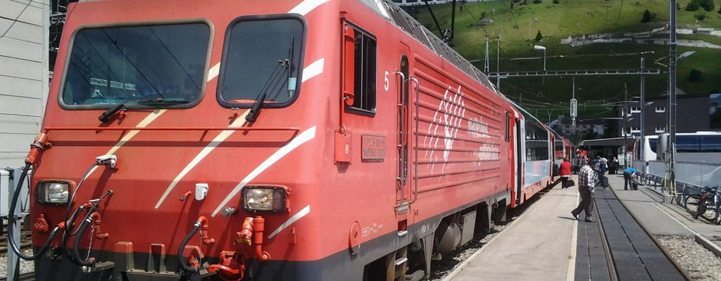 Частная однодневная экскурсия на панорамном поезде Glacier Express из Берна