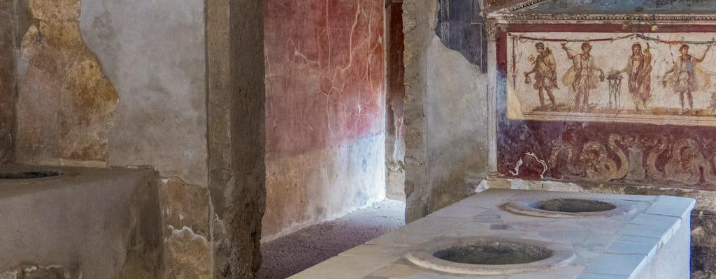 Tour privado de Pompeya para gourmets