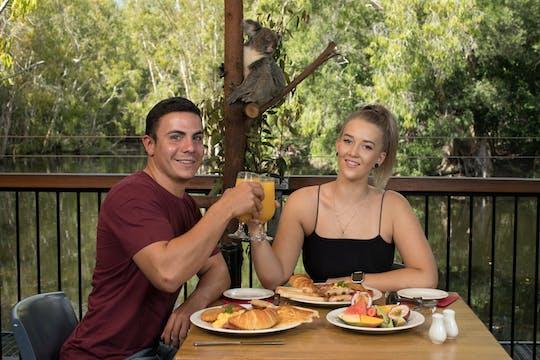 Café da manhã com os coalas