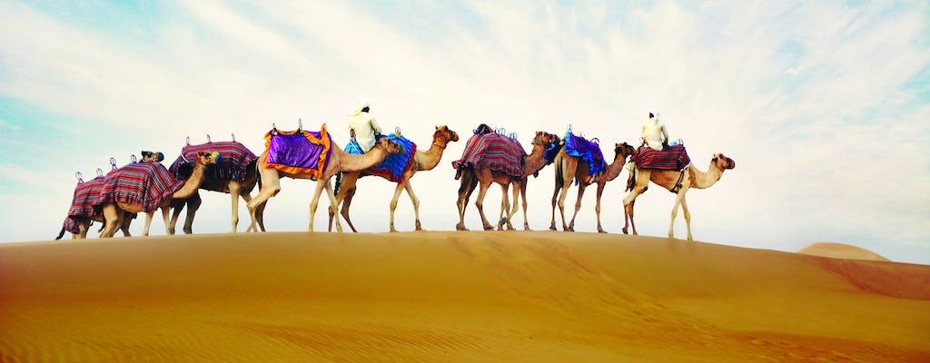 Przejażdżka na wielbłądach z opcjonalną kolacją w obozie w Ras Al Khaimah