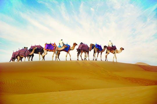 Passeio de camelo com jantar opcional no acampamento em Ras Al Khaimah