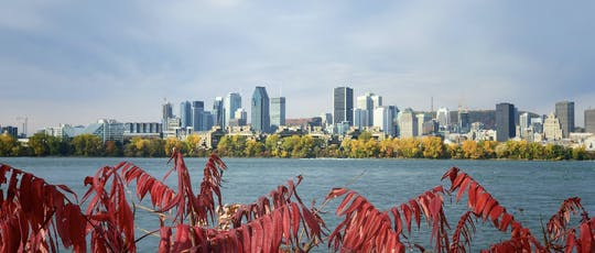 Montreal must-sees and hidden gems private walking tour
