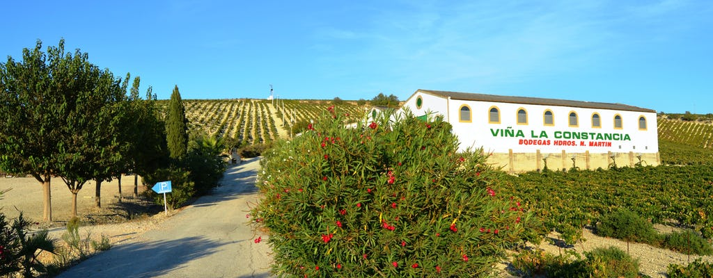 Privé ontbijt tussen de Wijnranken bij Bodega Viña la Constancia tocht