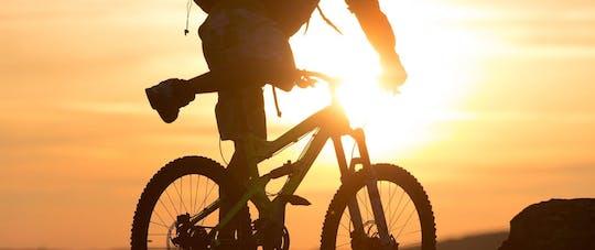 Passeio guiado de E-mountain bike em Voss