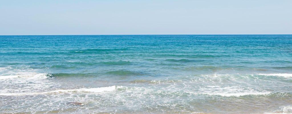 Zakynthos Luxus-Bootsfahrt mit Beachhopping nach Smuggler's Cove