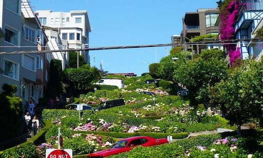 San Francisco 24h hop-on hop-off and Sonoma Valley wine tour