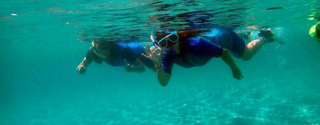 Viagem de mergulho com snorkel na Ilha Tabarca saindo de Santa Pola