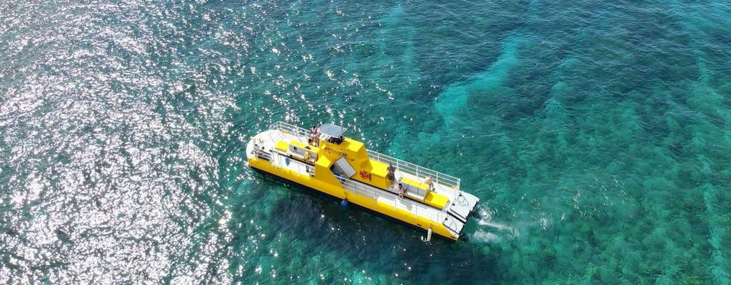 Passeio de barco com fundo de vidro de 90 minutos em Maui
