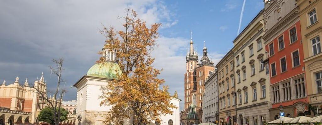 Krakow Rynek Underground Museum guided tour