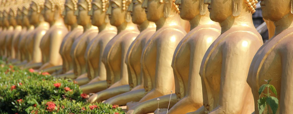 Pakse full-day private city tour