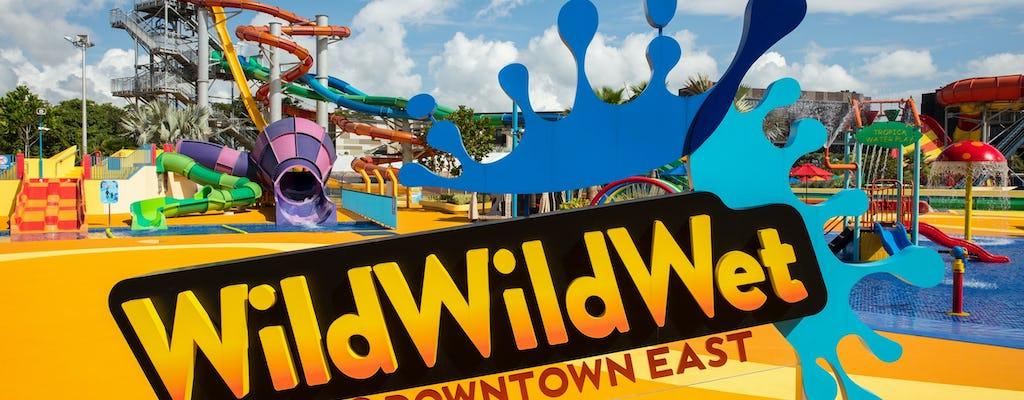 Входной билет в аквапарк Wild Wild Wet