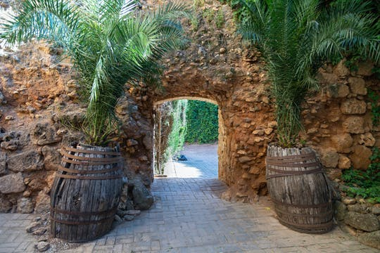 Viva Andalusië Kleine Groepstocht