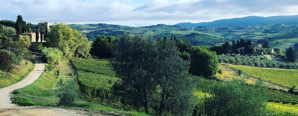 Escursione per piccoli gruppi e degustazione di vini nel Chianti con pranzo