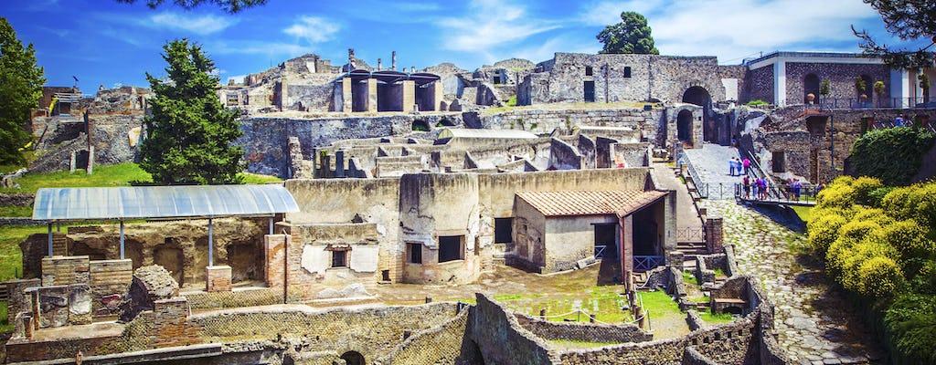 Tour privato di Pompei, Ercolano e Vesuvio