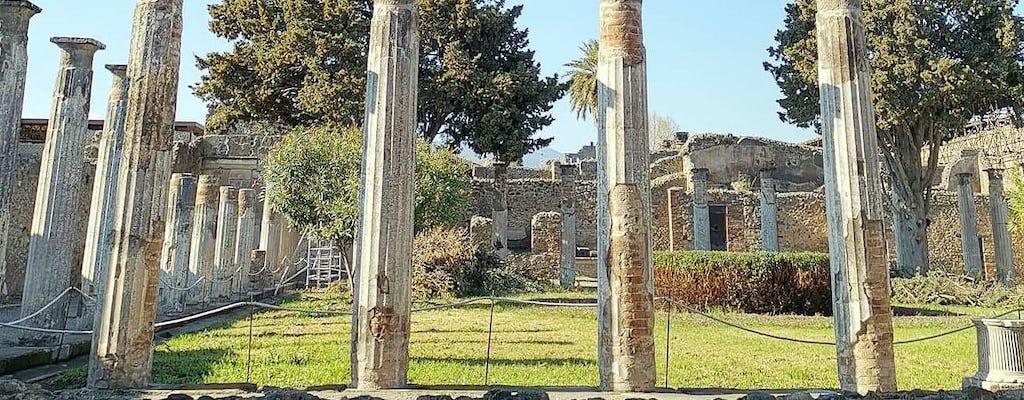 Pompeii & Amalfi Drive Small Group Tour