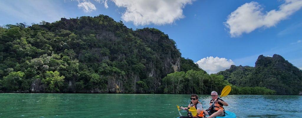 Signature mangrove kayaking tour