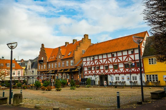 Aalborg private guided walking tour