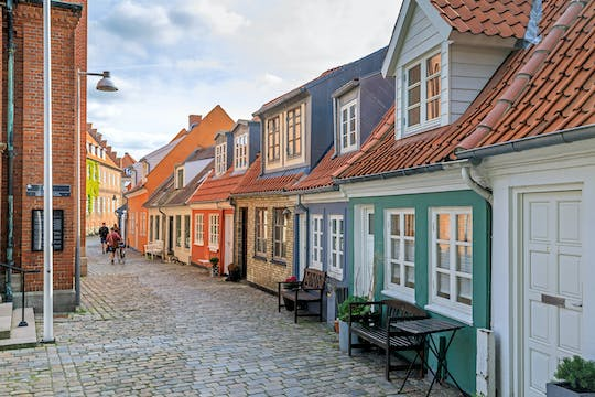 Aalborg private city tour with local guide