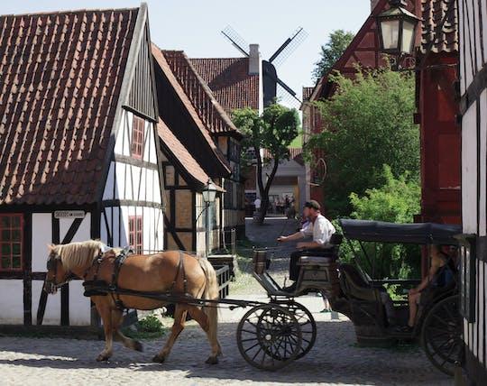 Aarhus Den Gamle por passeio a pé privado