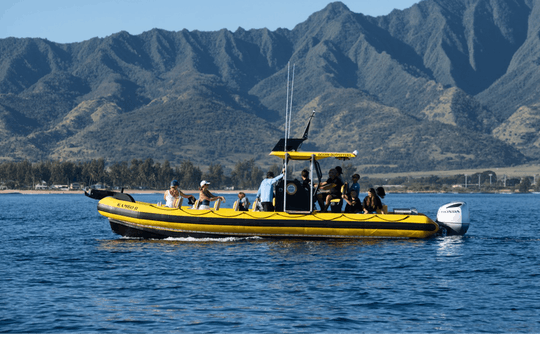 1,5-godzinna wycieczka łodzią ratunkową z przewodnikiem po Oahu