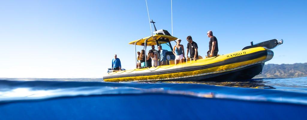 North Shore Oahu snorkeling tour