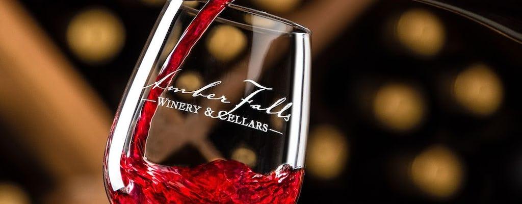 Madame Tussauds Nashville & Amber Falls wine tasting
