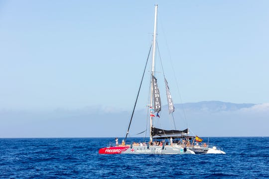 TUI Exclusive Whale & Dolphin Catamaran to Masca