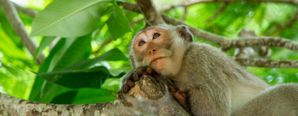 Tour Can Gio y la isla de los monos con almuerzo