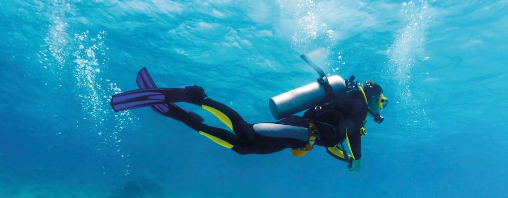 Plongée sous-marine pour les plongeurs expérimentés avec le Robinson Club de Chypre