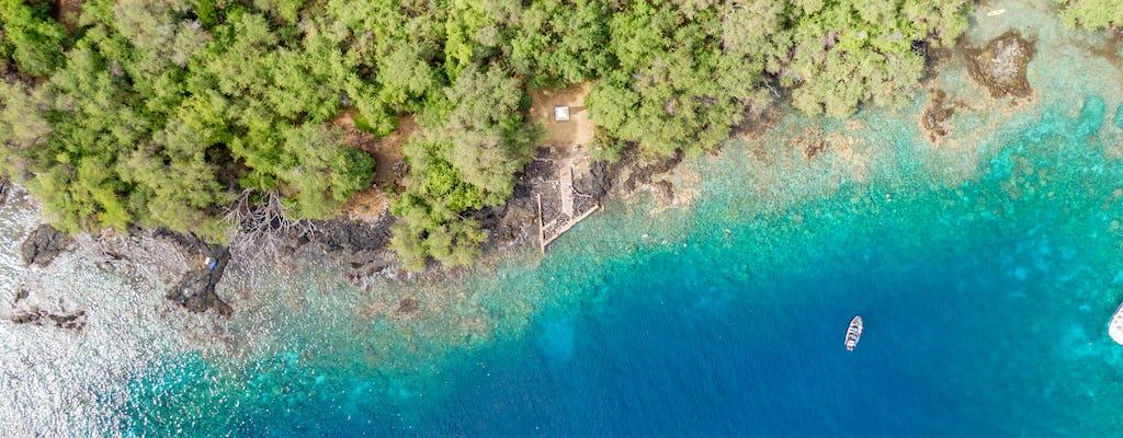 4-hour Kealakekua Bay snorkeling adventure