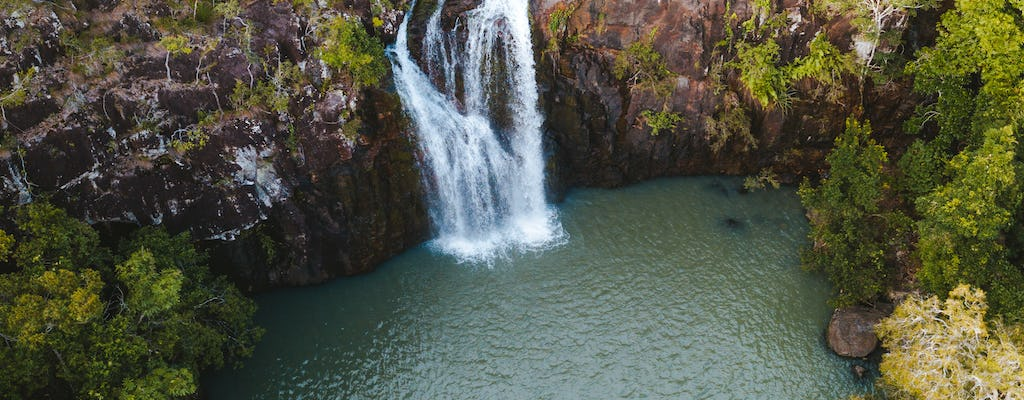 Cedar Creek Falls and Coral Sea Resort tour with lunch