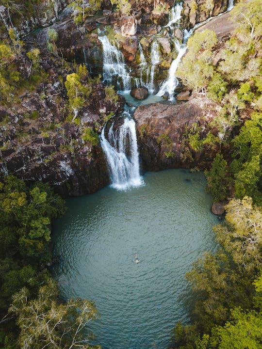 Passeio em Cedar Creek Falls e Coral Sea Resort com almoço