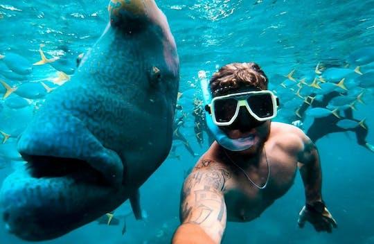 Rejs Tongarra Whitsundays i snorkeling z lunchem