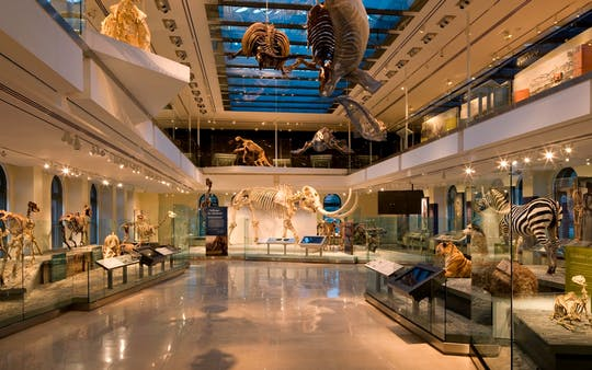 Entradas para el Museo de Historia Natural de Los Ángeles