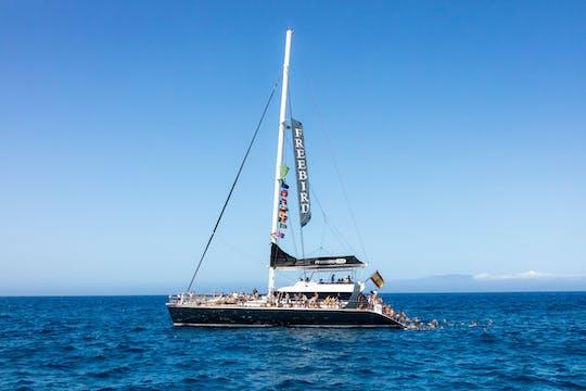 Masca Whale & Dolphin Catamaran Cruise