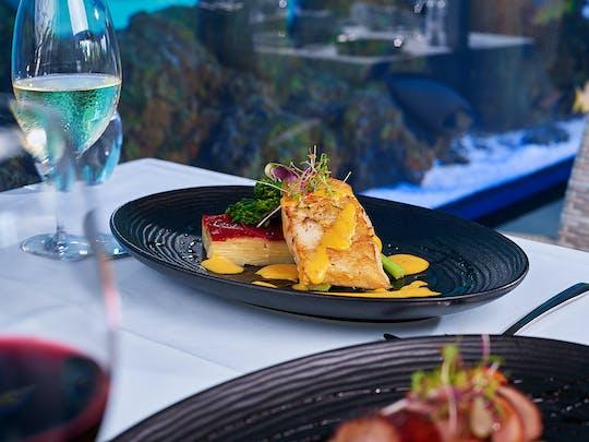Сумеречная экскурсия по аквариуму Кэрнса с гидом и ужином из трех блюд