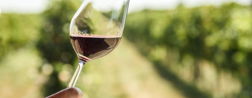 Tour of Collio Cividale Del Friuli and wine tastings