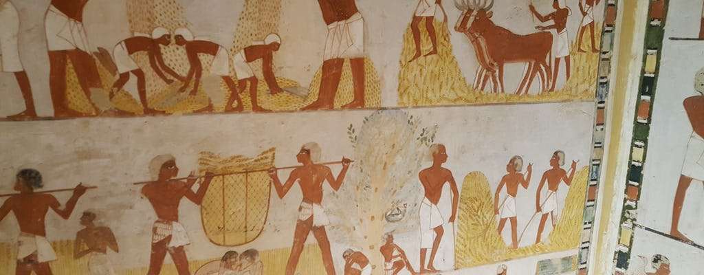 Guided tour of Valley of the Nobles, Medinat Habu and The Ramesseum from Luxor