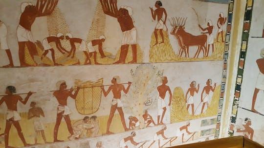 Visita guiada ao Vale dos Nobres, Medinat Habu e O Ramesseum de Luxor