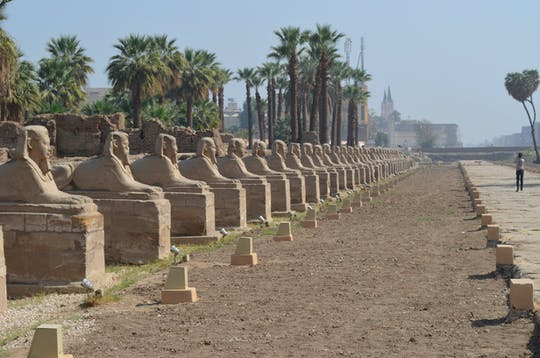 Discover Karnak Temple, the Sphinx Alley and Luxor Temple