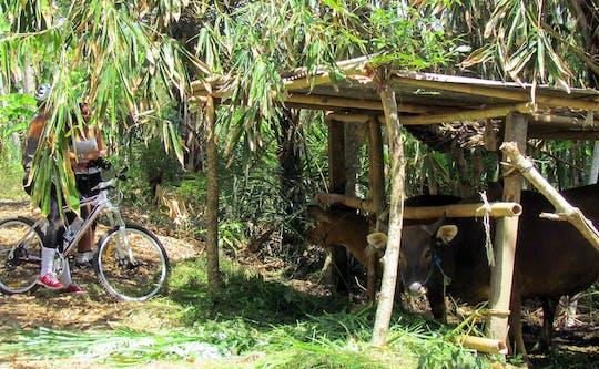 Salak Agro - Idyllische Radtour