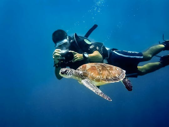 Diving Experience & Boat Tour of Saona Island
