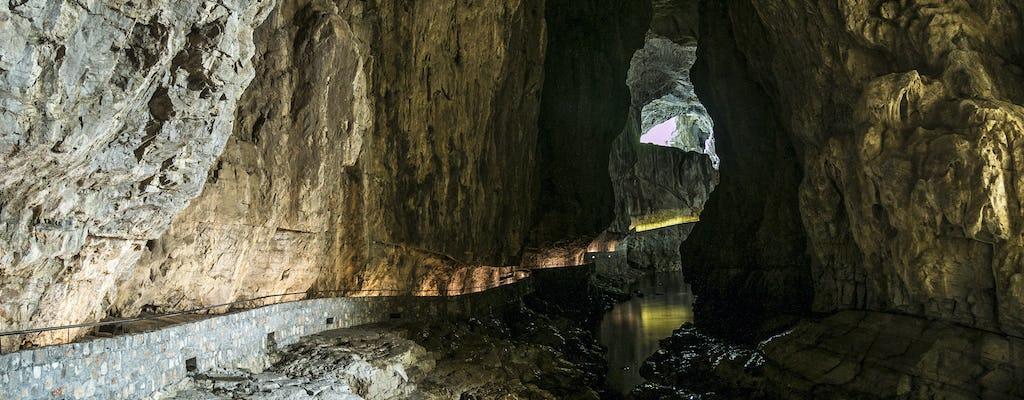 Visita guiada a la ganadería de Lipica y las cuevas de Skocjan desde Trieste
