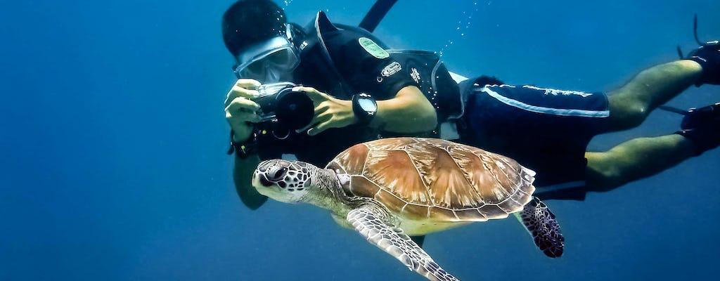 Expérience de plongée sous-marine et visite en bateau de l'île de Saona