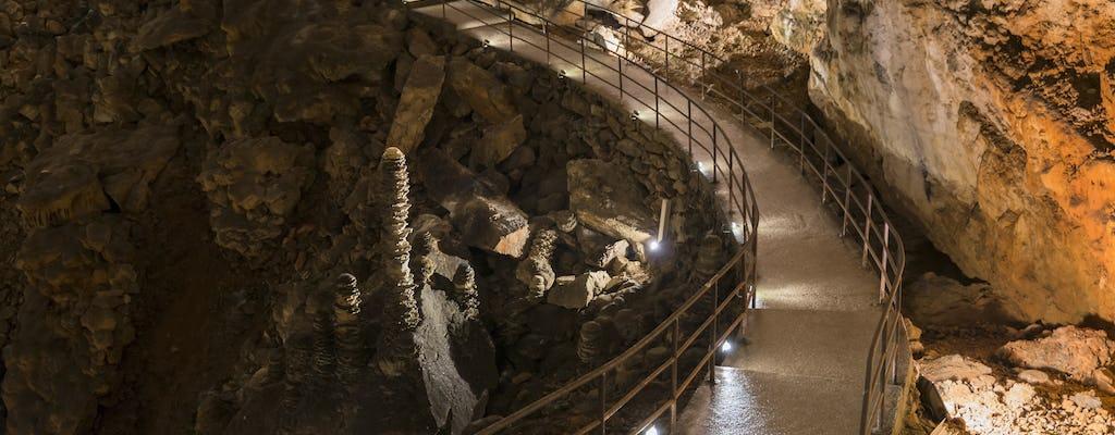 Экскурсия с гидом в Грот Гиганте и замок Дуино из Триеста