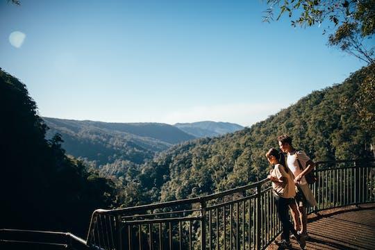Natural Bridge and Springbrook tour