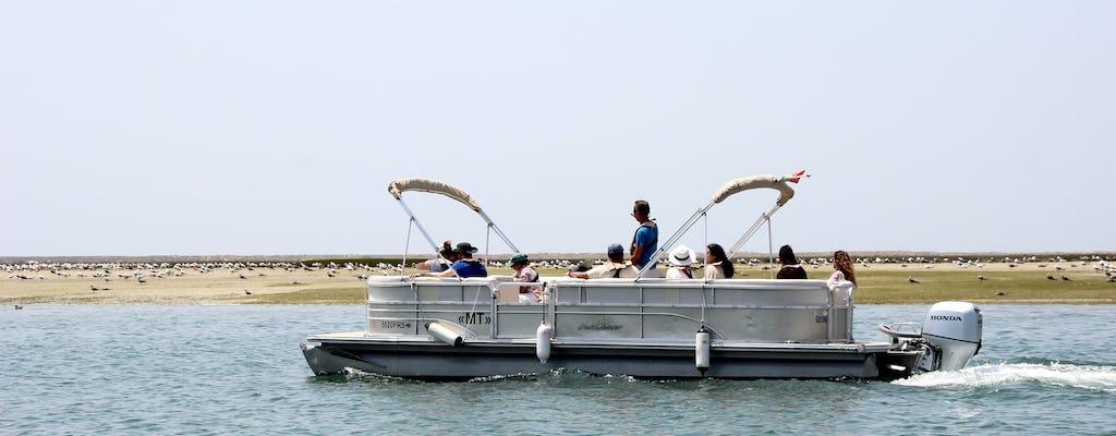 Paseo en barco de observación de aves por la Ría Formosa