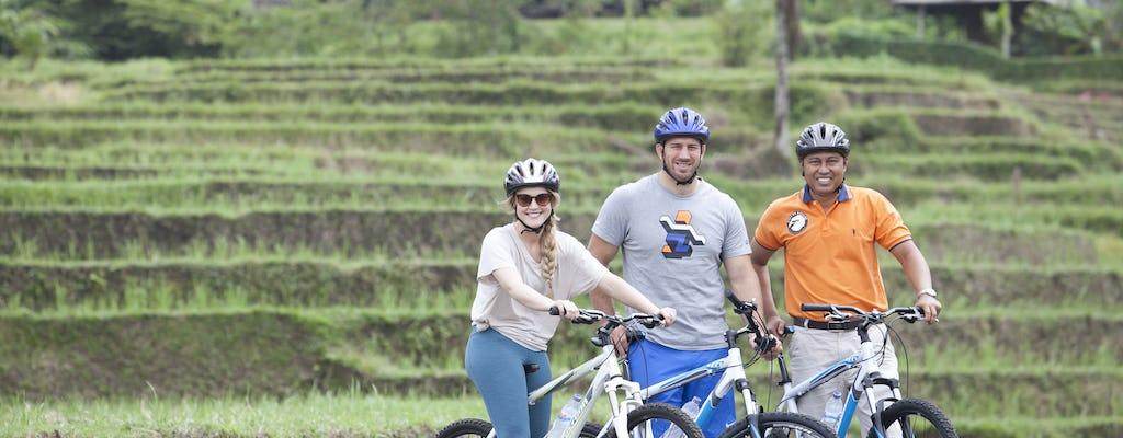 Original Balinese mountain biking full day tour