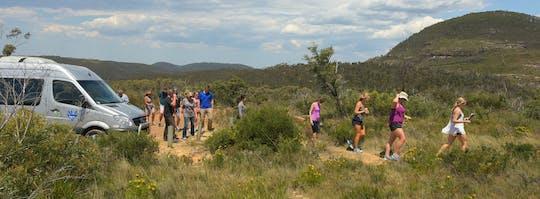 Całodniowa prywatna wycieczka z przewodnikiem po Górach Błękitnych z Sydney?