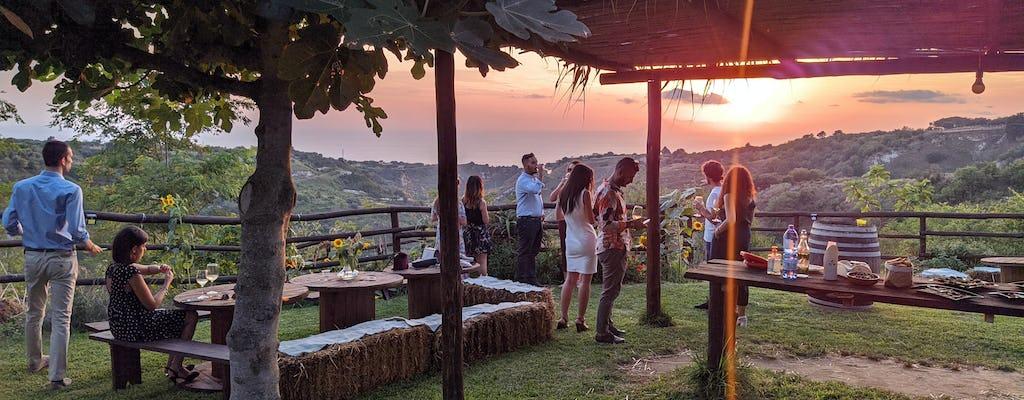 Calabria Vineyard Experience